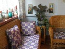 Accommodation Zalkod, Kató néni Guesthouse
