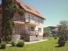 Accommodation Pleșcoi, Apolka Guesthouse