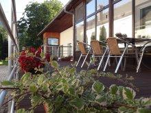 Accommodation Mânzălești, Katalin Guesthouse
