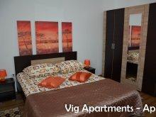 Cazare Ruginosu, Apartament Vig