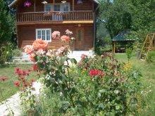 Accommodation Plopu, Tichet de vacanță, Venus Guesthouse