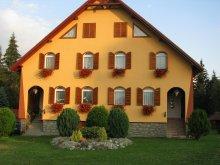 Accommodation Toplița, Baricz Guesthouse