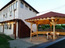 Accommodation Mamaia, Hostel Pestisorul Costinesti