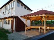 Vilă Siriu, Vila Pestisorul Costinesti