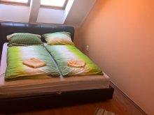 Accommodation Hajdúszoboszló, Noemi Apartment