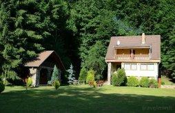 Accommodation Brașov, Máréfalvi Patak Guesthouse