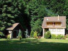 Casă de vacanță Izvoru Mureșului, Casa de vacanta Máréfalvi Patak