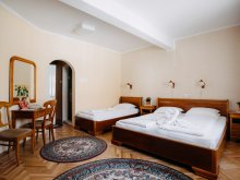 Bed & breakfast Băile Homorod, Lilla Guesthouse