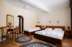 Bed & breakfast Szekler Land, Lilla Guesthouse