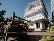 Accommodation Sepsiszentgyörgy (Sfântu Gheorghe), Lilla Guesthouse