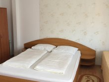 Accommodation Viștișoara, Kristine Guesthouse
