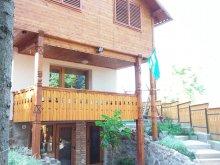 Casă de vacanță Susenii Bârgăului, Casa Székely