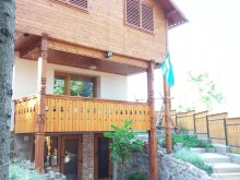Casă de vacanță Vlăhița, Casa Székely