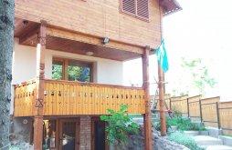 Vacation home near Magheruș Bath, Székely House
