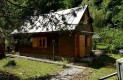 Chalet Moftinu Mic, Gaby Guesthouse