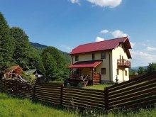 Accommodation Țigănești, Carmen Vila