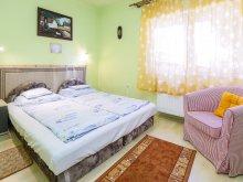 Accommodation Noszvaj, Apartment Havas