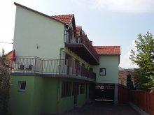 Vendégház Apanagyfalu (Nușeni), Szabi Vendégház