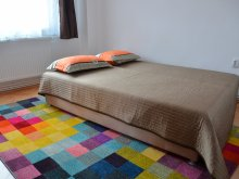 Accommodation Malnaș-Băi, Modern Apartment