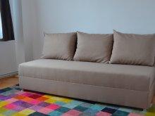 Accommodation Siriu, Modern Apartment