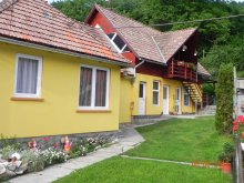 Accommodation Bucin (Praid), Hegyalja Pension
