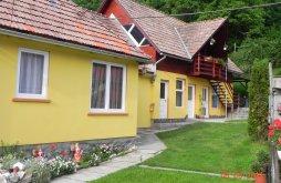 Accommodation Praid, Hegyalja Pension