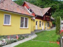 Accommodation Praid, Tichet de vacanță, Hegyalja Pension