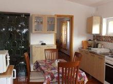Accommodation Heves county, Brigitta Apartment