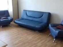 Accommodation Broșteni (Produlești), Adrian Apartment