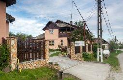 Accommodation Dăneștii Chioarului, Virág Guesthouse