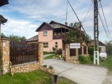 Bed & breakfast Boghiș, Virág Guesthouse