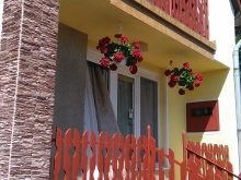 Accommodation Borsod-Abaúj-Zemplén county, Bálnt Guesthouse