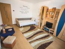 Accommodation Bâlca, Morning Star Apartment