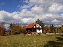 Accommodation Zetea, Csendes Bükk 1 Chalet