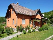 Accommodation Sub Cetate, Vitus Lenke Apartment
