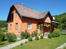 Apartament Sovata, Apartament Vitus Lenke