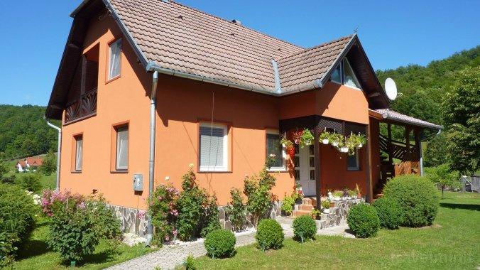 Apartament Vitus Lenke Sub Cetate