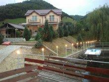 Accommodation Huzărești, Luciana Chalet