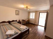 Accommodation Ciungetu, Flori B&B