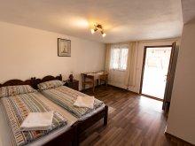 Accommodation Sibiu county, Travelminit Voucher, Flori B&B