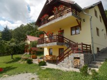Accommodation Alexandru Odobescu, Gyorgy Pension