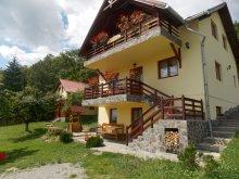 Accommodation Întorsura Buzăului, Gyorgy Pension