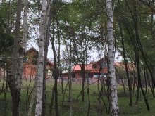 Casă de oaspeți Cetea, Casa de oaspeți RoseHip Hill