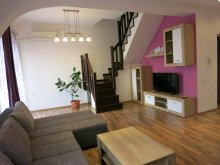 Accommodation Sâniob, Penthouse Apartment
