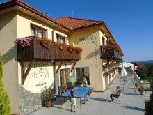 Accommodation Mușetești, Castania Guesthouse