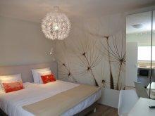 Accommodation Budacu de Sus, H49 Apartment