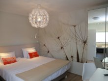 Accommodation Lunca Bradului, H49 Apartment