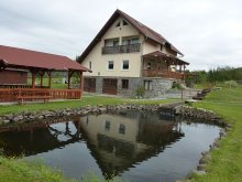 Accommodation Scăriga, Bíró Orsolya Guesthouse