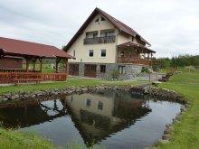 Pachet Vlăhița, Casa la cheie Bíró Orsolya