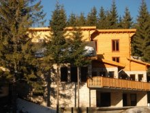 Accommodation Sânzieni, Bagolykő Chalet